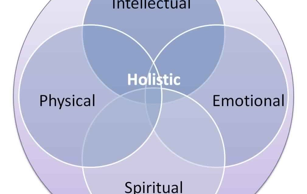 Do You want to Know Everything About Holistic Healthcare?