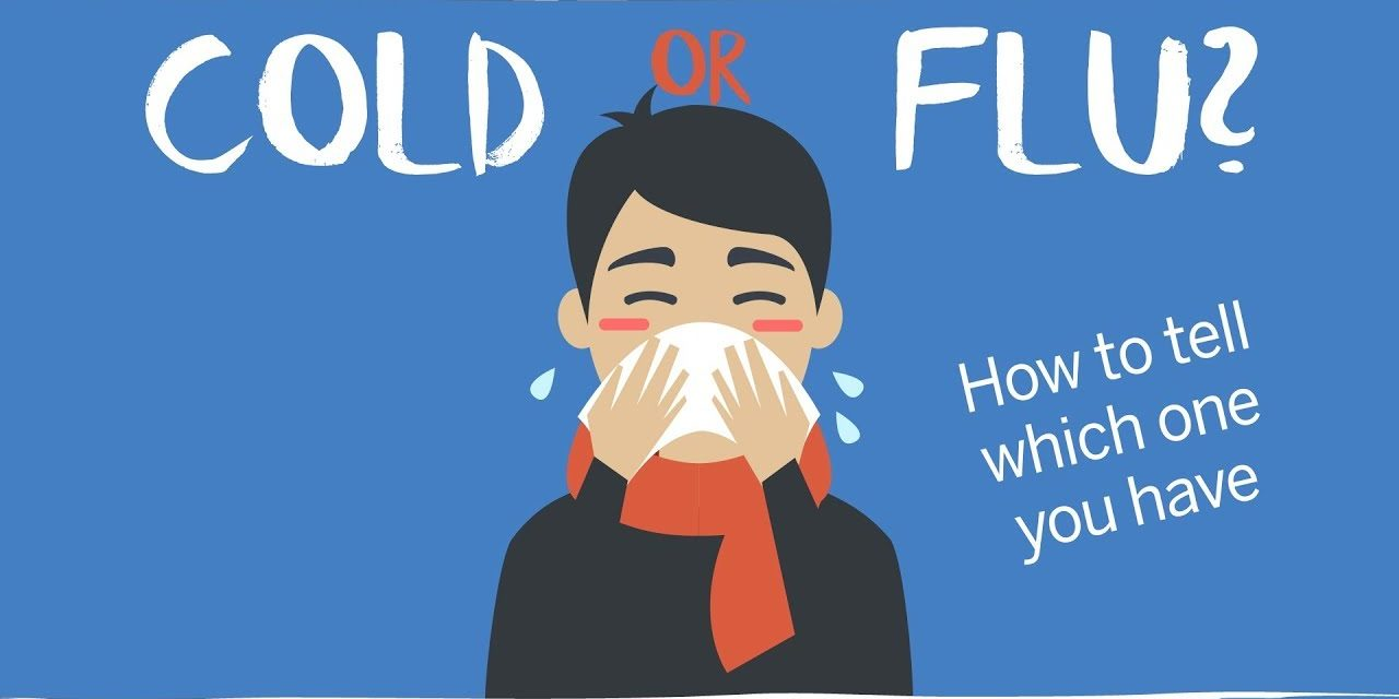 Spices That Can Treat the Cold and Flu