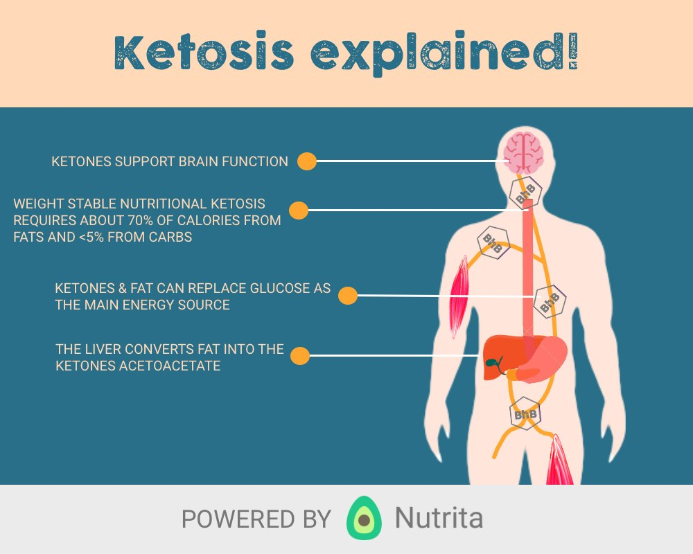 ketosis explained by nutrita