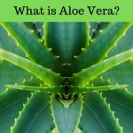 Fruit Of The Earth Aloe Vera Gel: Benefits, Risks, Uses, and More…