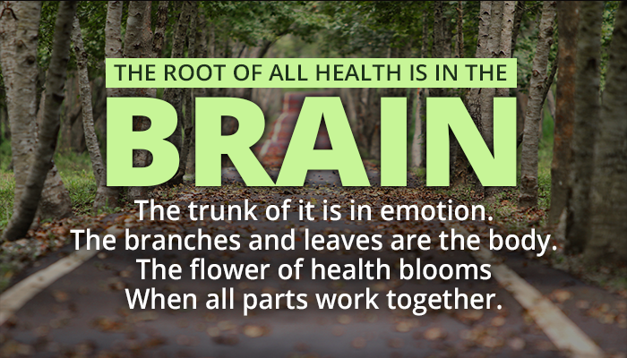 THE ROOT OF ALL HEALTH IS IN THE BRAIN. The trunk of i is in emotion. The branches and leaves are the body. The flower of health blooms when all parts work together.