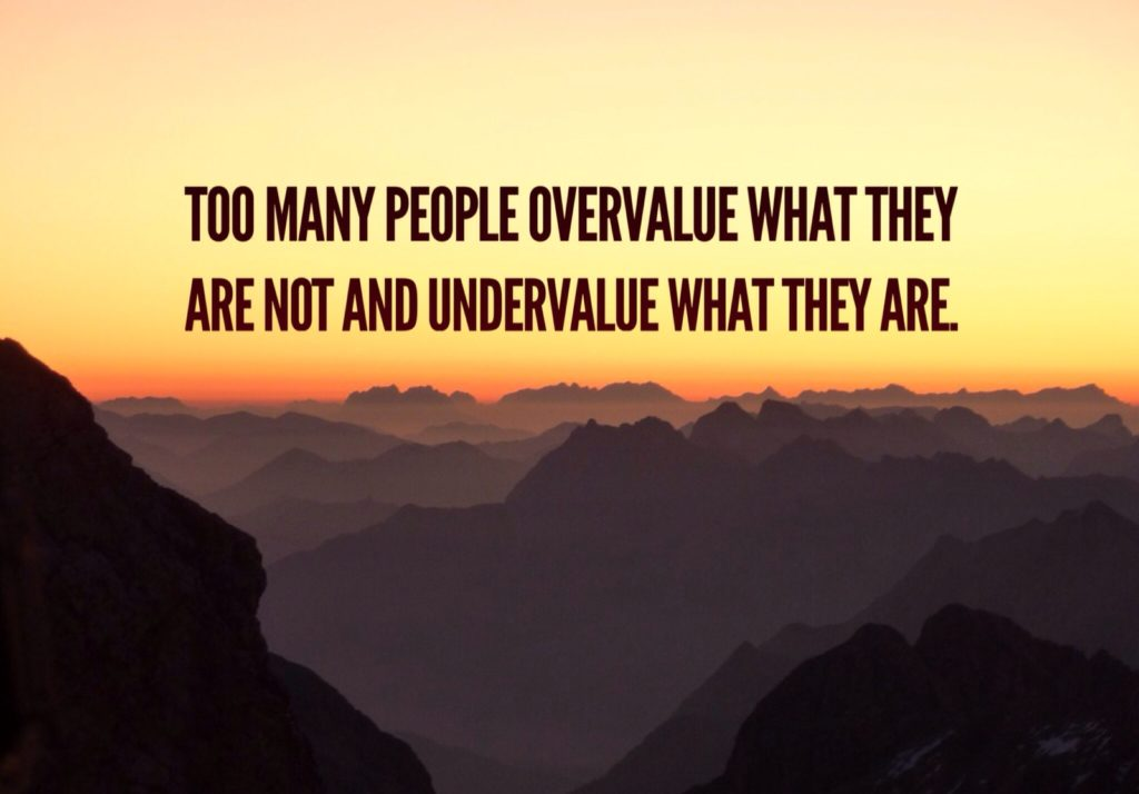 TOO MANY PEOPLE OVERVALUE WHAT THEY ARE NOT UNDERVALUE WHAT THEY ARE.